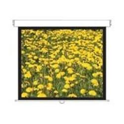 Optoma Panoview DS3120PMG Manual Pull Down Projection Screen 120""